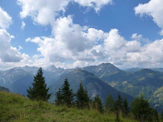 Alpin Life Resort Lürzerhof: wandern