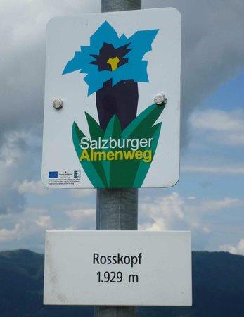 Alpin Life Resort Lürzerhof: wandern2