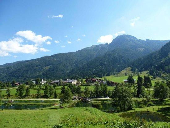Alpin Life Resort Lürzerhof: Wildpark