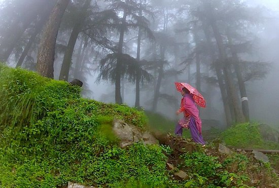 Monsoon fog or living in the clouds in Mcleod Ganj, India and the contrasts of color