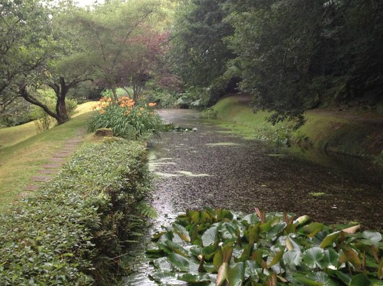Docton Mill Gardens & Tea Rooms: A view of the Gardens