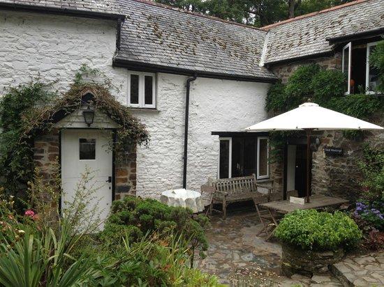 Docton Mill Gardens & Tea Rooms: Docton Mill
