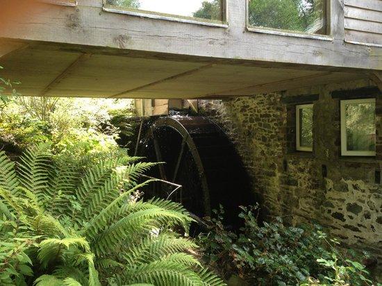 Docton Mill Gardens & Tea Rooms: Docton Mill Wheel