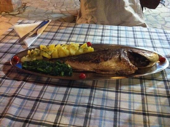 Trattoria dal pescatore: fantastica orata pescata poche ore prima... bravo Antonio...