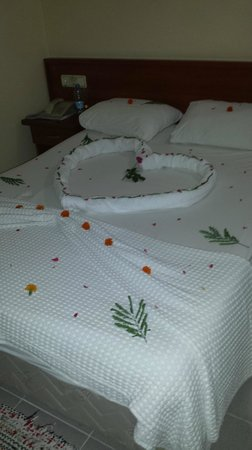 Hotel Turk : My bed made up for my birthday