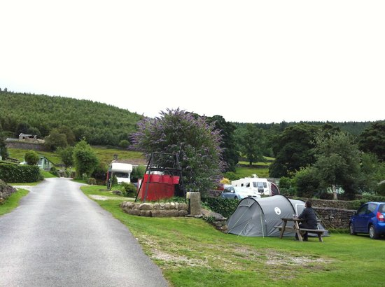 Howgill Holidays Caravan Park and B&B: Howgill Lodge Campsite