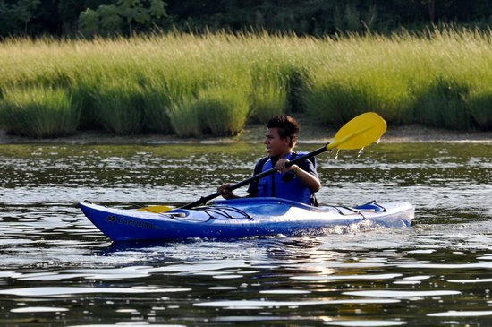 kayaking picture of the waterfront center oyster bay tripadvisor