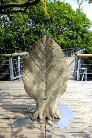 Baumkronenpfad Hainichen