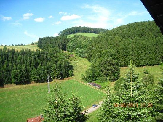 Ferienhof Breig: Balkonblick 3