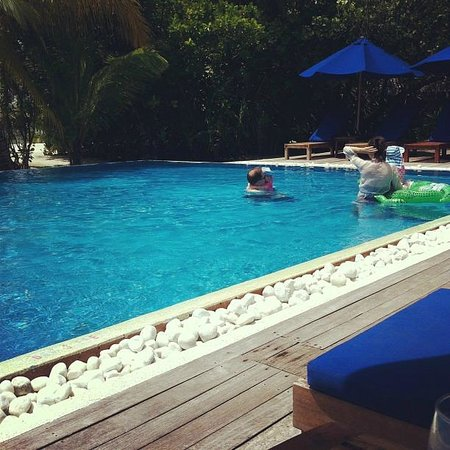 Olhuveli Beach & Spa Maldives: it have 2 pool in the island. this is family pool