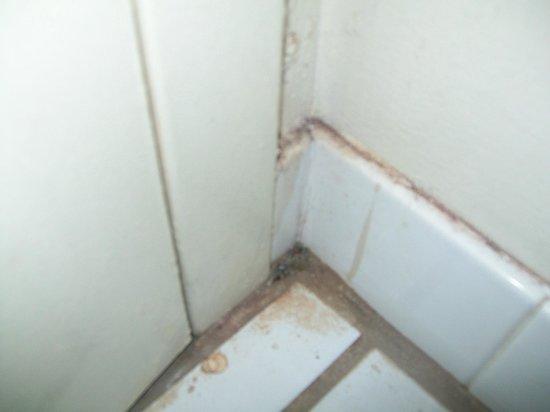 Days Inn Bradenton - Near the Gulf: corner in bathroom