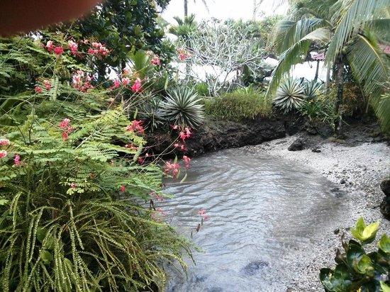 La Piscina Natural: The coral sand beach.