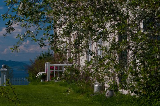 Annexstad Gard : Annexstad gård, utsikt fra tunet