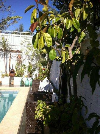Hotel Vendimia: Terraza