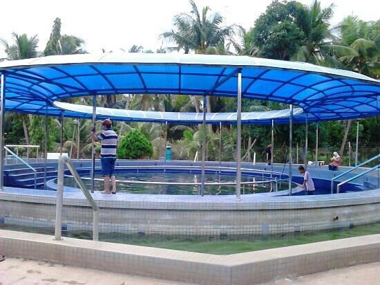 Grisek Hot Spring: hot spring pool