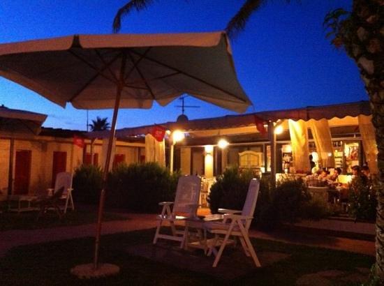 Alcione Beach, Marina di Carrara - Restaurant Reviews, Phone Number ...