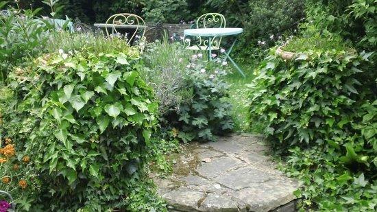 At Home London B&B: Rosa's garden