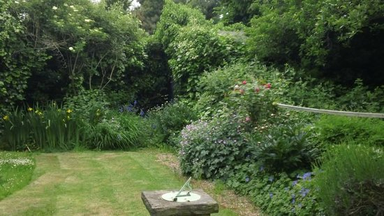 At Home London B&B: Rosa's Garden in the back