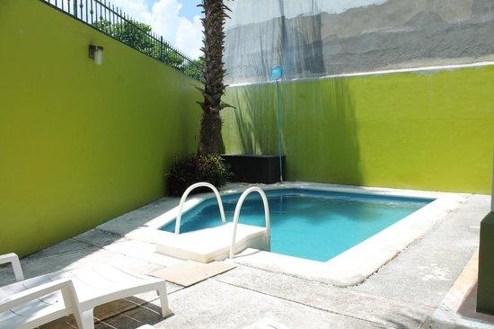 Los Alcatraces: Pool