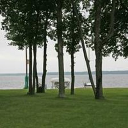Leech Lake B&B : Park-Like Yard