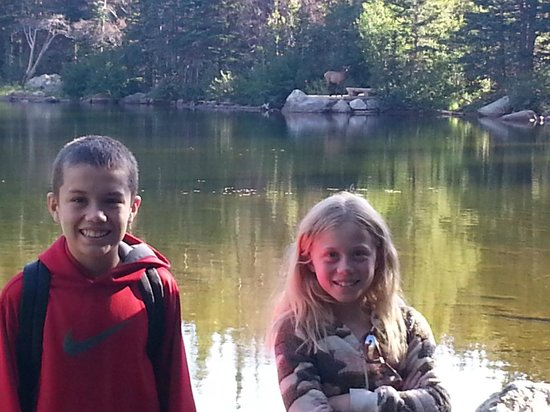 Streamside on Fall River: My kids got photo bombed by an elk!