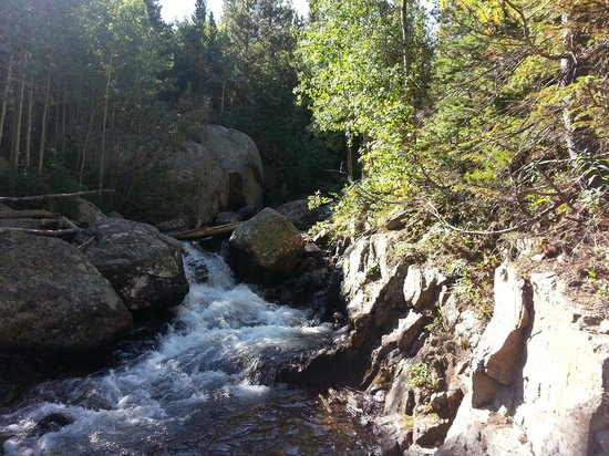 Streamside on Fall River: RMNP
