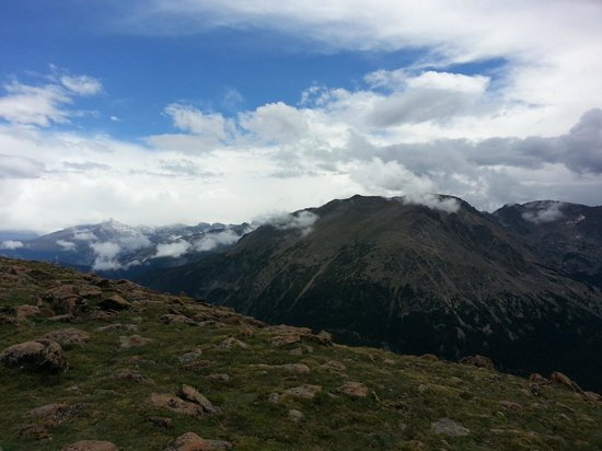 Streamside on Fall River: RMNP.  View from Trail Ridge Rd.
