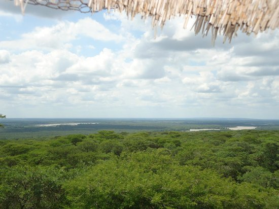 Ndumo Rest Camp: View from lookout at main entrance gate of the park and swamps