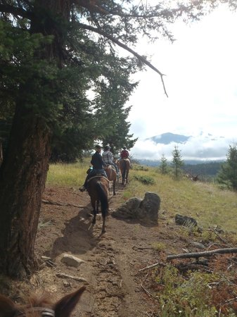 Jasper Riding Stables: Riding along the steepest part of the 2 hour ride - beautiful view!