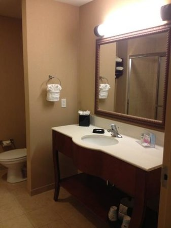 Hampton Inn & Suites Ocala - Belleview: The walk-in shower was a nice change and very roomy.
