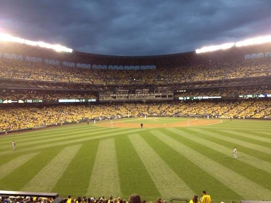 Seattle Mariner Baseball: take me out to the ball game.