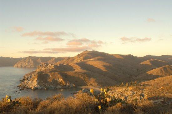 El Terado Terrace Mini Suites & Townhomes: Catalina Island