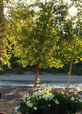 Casey's Riverside RV Park: View of the river and flowers at the entrance to our site.