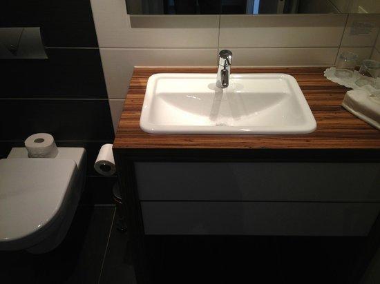 Reit und Sporthotel Eibenstock: Sink
