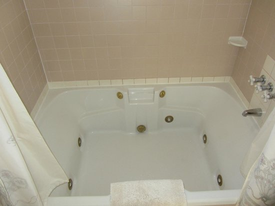 Blue Goose Inn Bed and Breakfast: Jacuzzi Tub