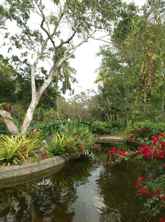 Ocean Reef Yacht Club & Resort: Garden of the Groves