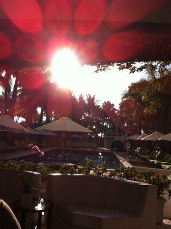 SBH South Beach Hotel: Piscine