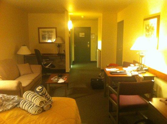 Comfort Inn & Suites: vue de la chambre