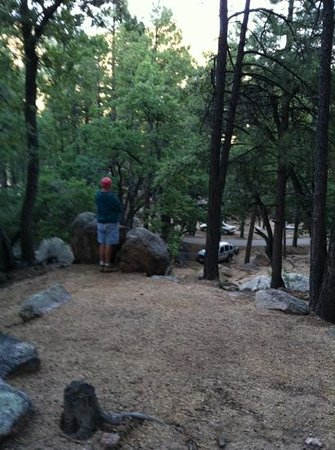 Hualapai Mountain Park: our view