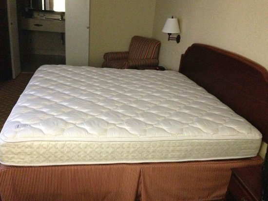Amberley Suite Hotel: What I saw when I entered the room