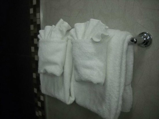 Comfort Inn Monticello : Towels