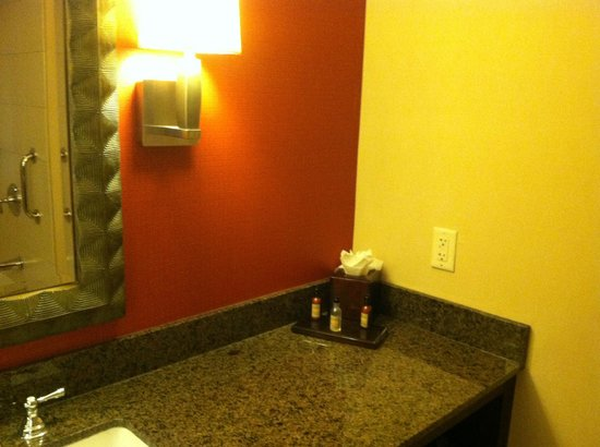 Lancaster Marriott at Penn Square: A view of the bathroom