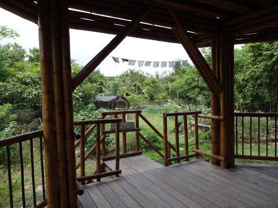 Casa de Guadua : View from porch