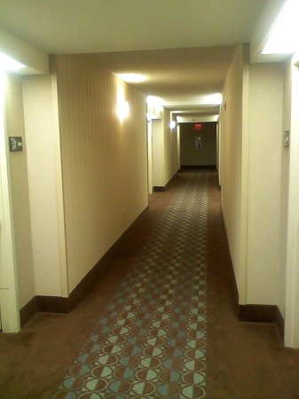 Hampton Inn NY - JFK: 8th Floor Hotel Hallway