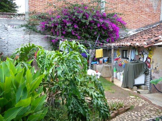Hostal el Rincon de  los Camellos: View from room
