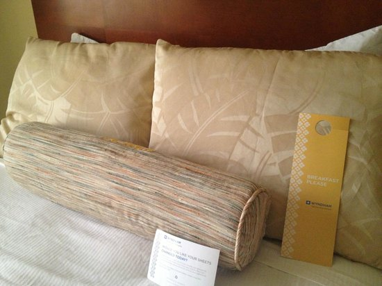 Holiday Inn Tampa Westshore: The Bed
