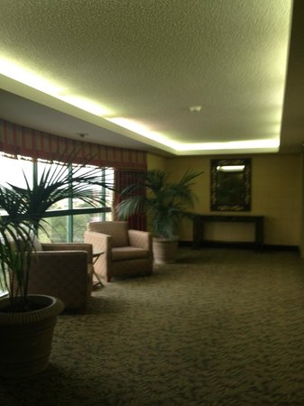 Holiday Inn Tampa Westshore: Seating area outside elevators