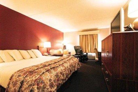 Fireside Inn & Suites: Kingbed