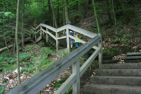 Munising Falls : Trail