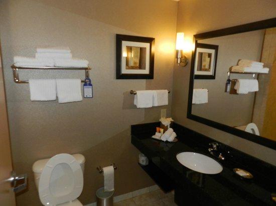 BEST WESTERN PREMIER Miami International Airport Hotel & Suites: Banheiro